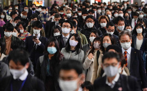 WB công bố kết quả khảo sát tác động của đại dịch COVID-19 lên 4.000 hộ gia đình tại Việt Nam - ảnh 2