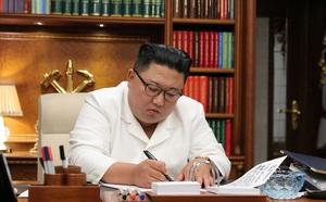 Vụ Triều Tiên bắn chết quan chức HQ: Thư ông Kim Jong Un khiến ông Moon cảm động mạnh - ảnh 1