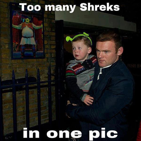 Quá nhiều gã Shrek trong một bức hình