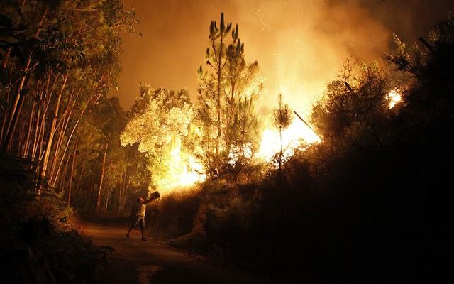 Một người dân dùng sô nước để chiến đấu với cháy rừng ở Santiago de Besteiros, Bồ Đào Nha.