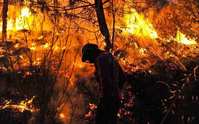 Lính cứu hỏa chiến đấu với cháy rừng gần ngôi làng Misarela và Vicosa ở Guarda, Bồ Đào Nha.
