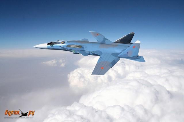 Kiểu thiết cánh đặc biệt giúp chiến đấu cơ Su-47 có thể giảm lực cản khi, giảm phản xạ tín hiệu radar và cải thiện khả năng cất cánh cũng như hạ cánh.
