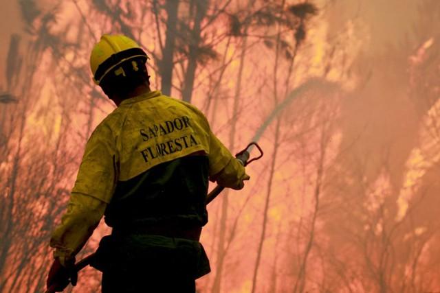 Lính cứu hỏa vất vả chiến đấu với cháy rừng ở Gois, Bồ Đào Nha.
