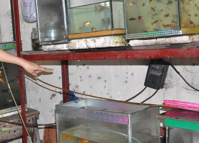 Mắm tôm pha luyn bắn tung tóe trong nhà ông Tuấn