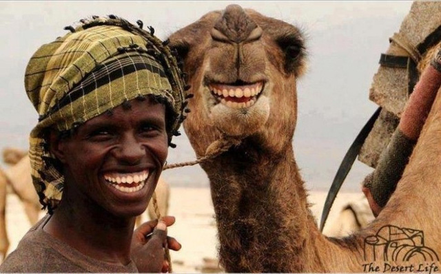 Cười ngất với chùm ảnh chủ nào tớ nấy