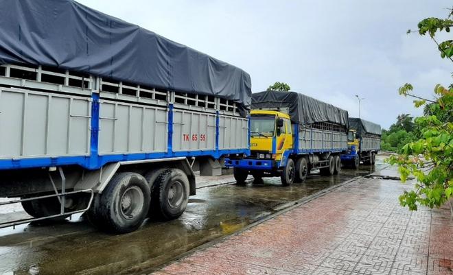 Tạm giữ 3 xe tải sử dụng biển kiểm soát, giấy tờ quân sự giả - Ảnh 1.