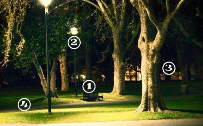 Nếu bị lạc một mình trong công viên giữa đêm tối, bạn sẽ chọn nơi 'trú ẩn' nào? - Đáp án rất thú vị