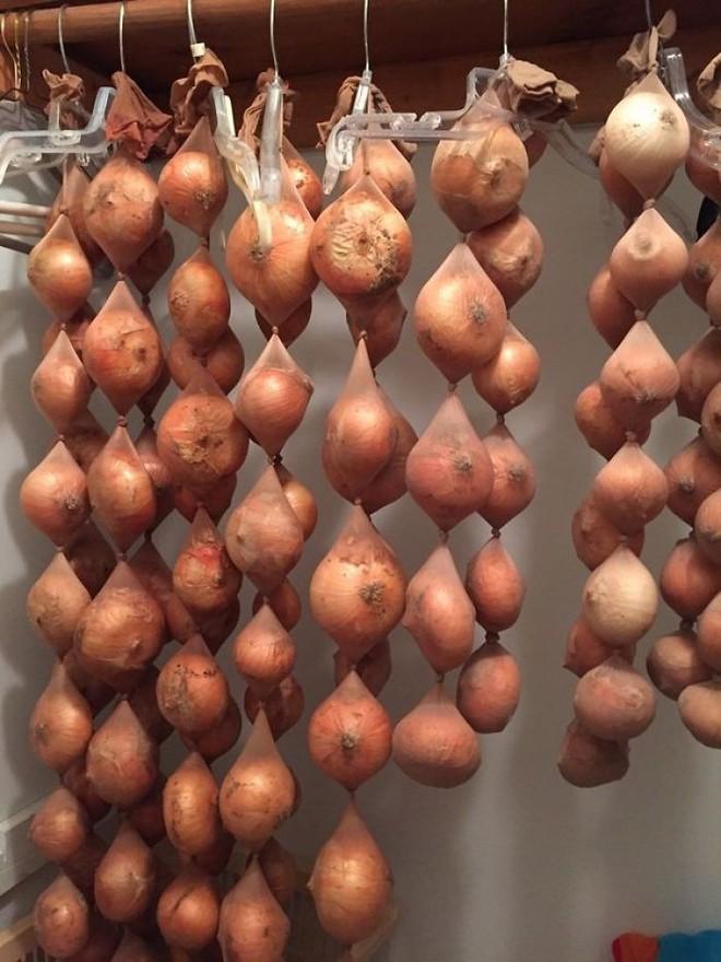 17 mẹo bảo quản giữ thực phẩm tươi ngon lâu hơn: Số 7 nhiều người hay nhầm lẫn - Ảnh 1.