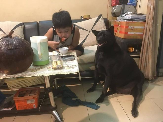 Sợ chó cưng đau lòng, cậu bé vừa ăn xúc xích vừa có hành động khiến tất cả không thể nhịn cười - Ảnh 2.