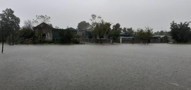 [Ảnh] Hà Tĩnh khẩn trương sơ tán hàng nghìn người dân vùng lũ lụt - Ảnh 1.