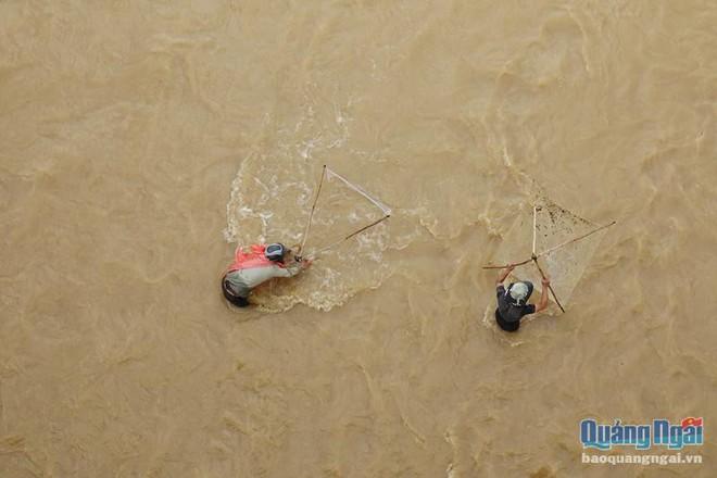 Săn cá ngày mưa lũ, hiểm nguy rình rập - Ảnh 1.