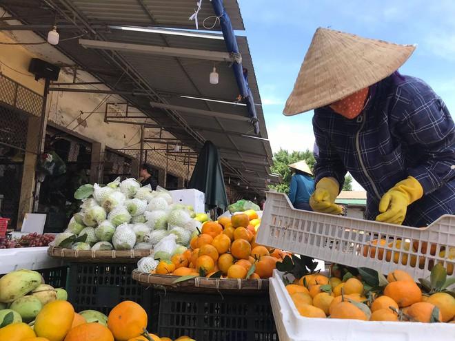 Sau lũ, tiểu thương chợ Hà Tĩnh mếu máo bới hàng hóa trong lớp bùn đất dày đặc - Ảnh 11.