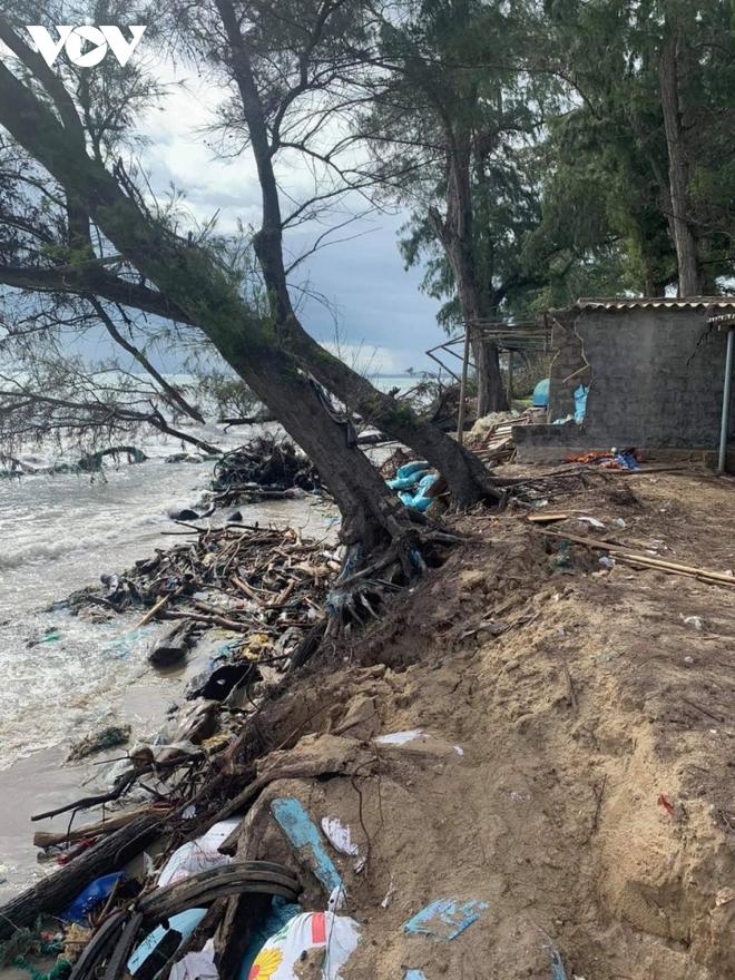 Sạt lở nghiêm trọng khu vực ven biển ở Bình Thuận - Ảnh 1.