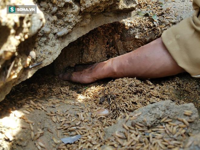 Tường trình từ vùng rốn lũ Lệ Thủy: Nhà sập, tay trắng, không còn nước mắt để khóc - Ảnh 12.