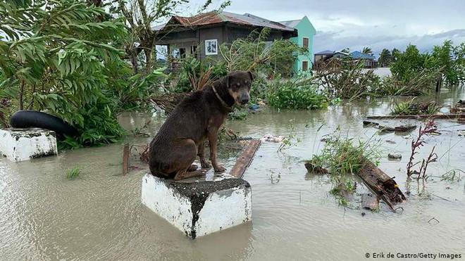 Báo nước ngoài viết về bão lũ miền Trung: Bão sát thủ vừa qua, Việt Nam lại sẵn sàng sơ tán 1,3 triệu dân - Ảnh 1.