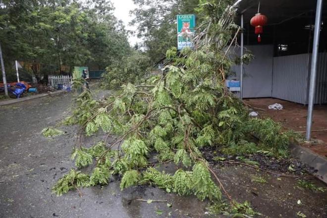 Bão số 9 áp sát, Lý Sơn mưa to, gió rất lớn, một số nhà dân và trụ sở các cơ quan chức năng đã bị tốc mái - Ảnh 5.
