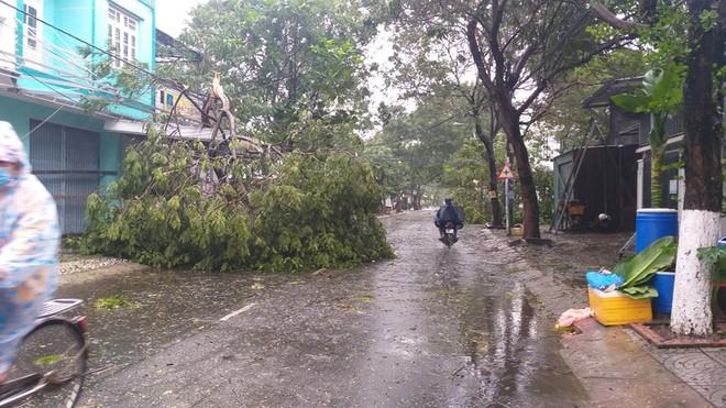 Bão số 9 áp sát, Đà Nẵng mưa to, gió lớn rít lên liên tục; Một số nhà dân và trụ sở các cơ quan chức năng ở Lý Sơn bị tốc mái - Ảnh 3.