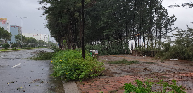 Bão số 9 áp sát, Đà Nẵng mưa to, gió lớn rít lên liên tục; Một số nhà dân và trụ sở các cơ quan chức năng ở Lý Sơn bị tốc mái - Ảnh 4.