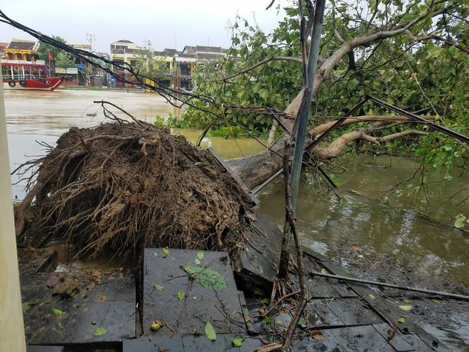 Gió bão lớn quật ngã người đàn ông xuống thành cầu; Bà con Quảng Nam, Quảng Ngãi, Bình Định: Trưa sẽ có lúc lặng gió, nhưng tuyệt đối không ra ngoài - Ảnh 2.