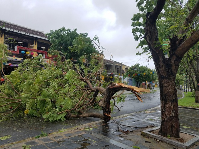 Gió bão lớn quật ngã người đàn ông xuống thành cầu; Bà con Quảng Nam, Quảng Ngãi, Bình Định: Trưa sẽ có lúc lặng gió, nhưng tuyệt đối không ra ngoài - Ảnh 4.