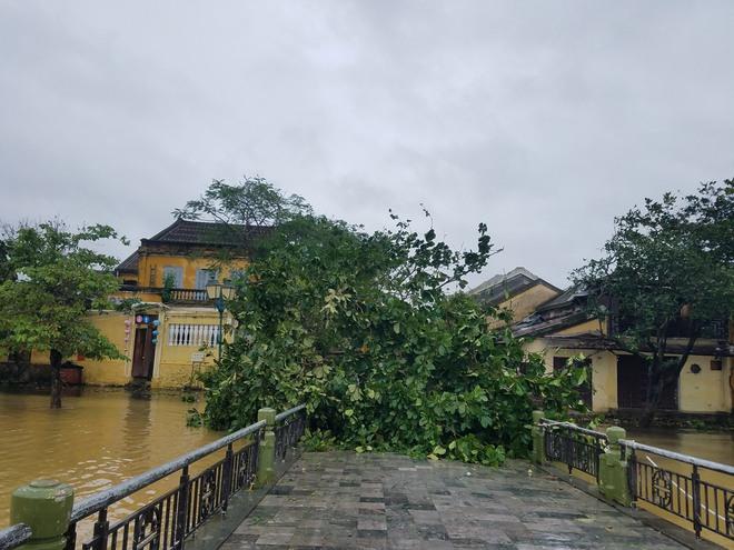 Gió bão lớn quật ngã người đàn ông xuống thành cầu; Bà con Quảng Nam, Quảng Ngãi, Bình Định: Trưa sẽ có lúc lặng gió, nhưng tuyệt đối không ra ngoài - Ảnh 5.