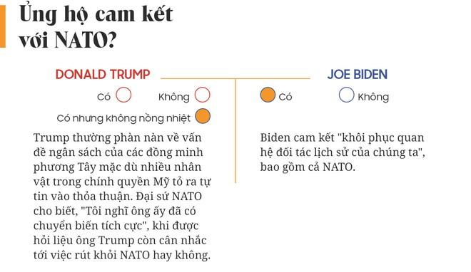 Yes or No: Cuộc chiến về chính sách giữa Donald Trump và Joe Biden - Ảnh 17.