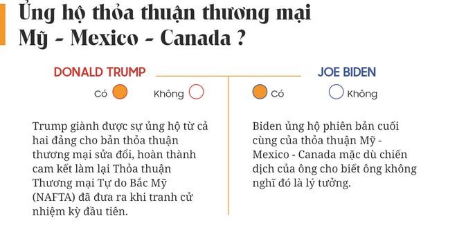 Yes or No: Cuộc chiến về chính sách giữa Donald Trump và Joe Biden - Ảnh 4.