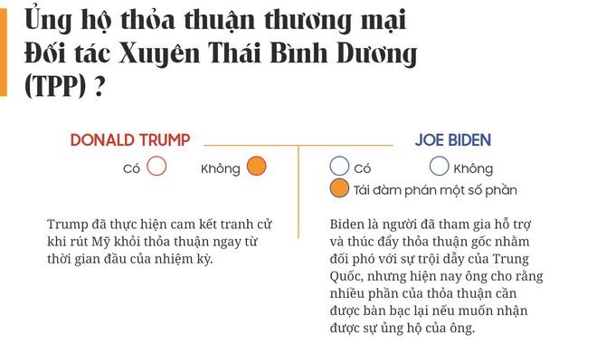 Yes or No: Cuộc chiến về chính sách giữa Donald Trump và Joe Biden - Ảnh 7.