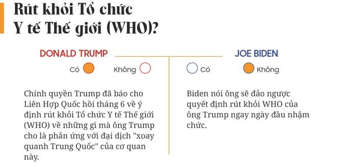 Yes or No: Cuộc chiến về chính sách giữa Donald Trump và Joe Biden - Ảnh 3.