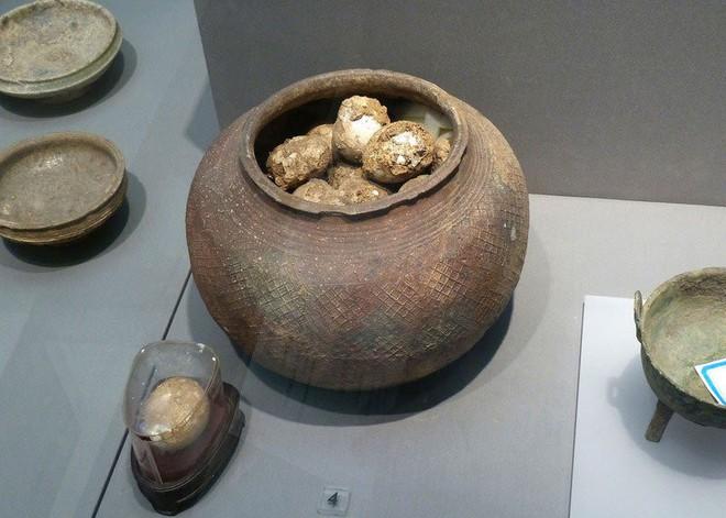 Chuyên gia khảo cổ tim đập chân run mỗi khi tìm thấy trứng trong lăng mộ - Lý do vì đâu? - Ảnh 1.