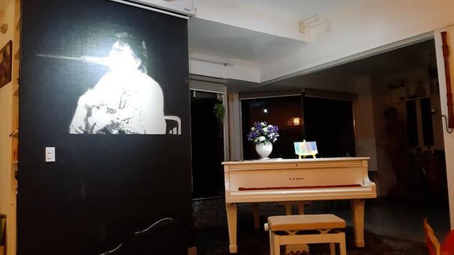 Không gian sống tuyệt đẹp của nhạc sĩ Trần Tiến ở Vũng Tàu - Ảnh 2.