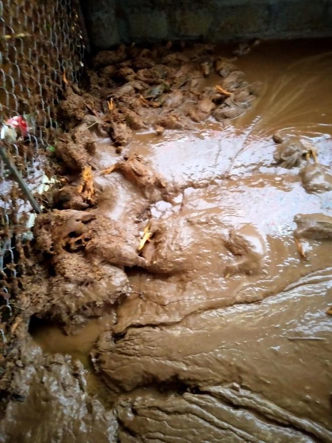 Lào Cai mưa lớn kỷ lục 63 năm qua gây ngập lụt cuốn trôi nhà dân, bé 3 tuổi tử vong - Ảnh 7.