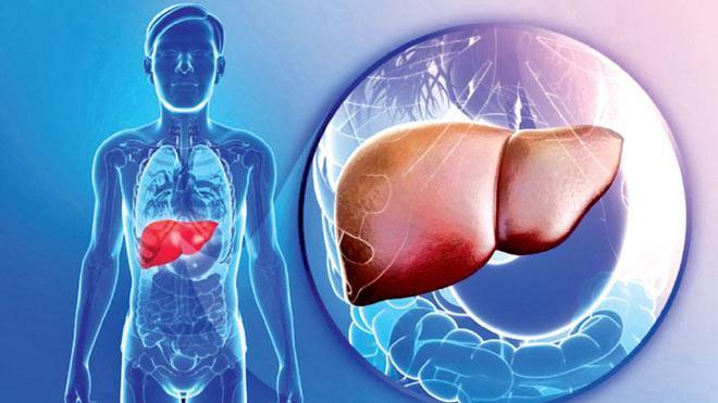 Nhiều người ăn kiêng vẫn bị gan nhiễm mỡ: Cách ăn sai lầm làm hại gan có thể bạn đang mắc - Ảnh 1.