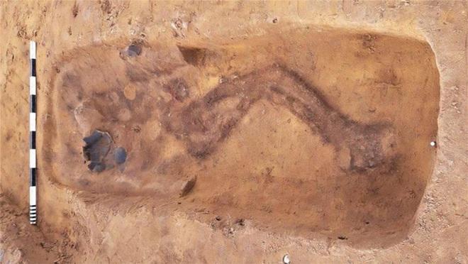Bí mật ngôi mộ có những bộ xương biết đào tẩu - Ảnh 1.