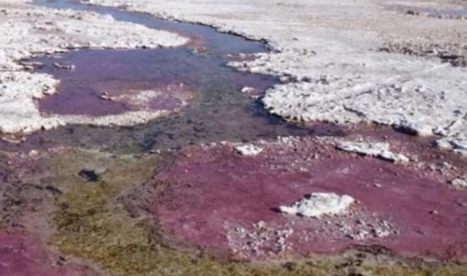 Tìm thấy sinh vật 3,5 tỷ năm tuổi hít thở bằng thạch tín - Ảnh 1.