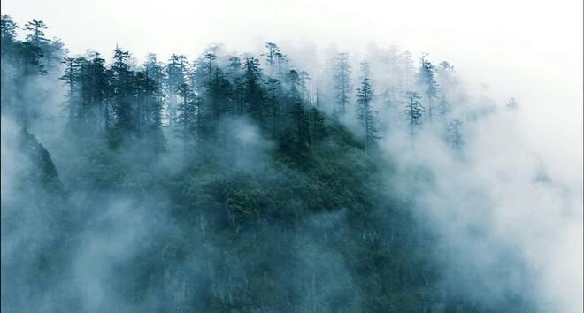 Thâm nhập Mê Hồn Trận ở Trung Quốc: Đội thám hiểm gặp hàng loạt điều kỳ lạ, chuyện gì đang xảy ra? - Ảnh 6.