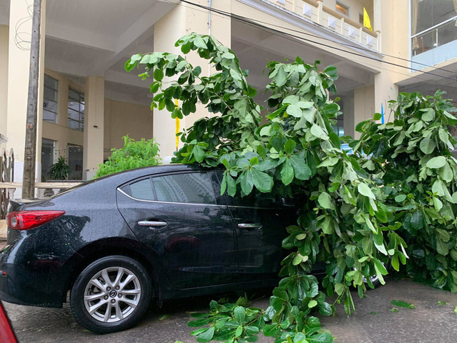 Nha Trang: Gió quật đổ hàng loạt xe máy trên đường, người dân nấp sau cột điện để tránh gió - Ảnh 2.