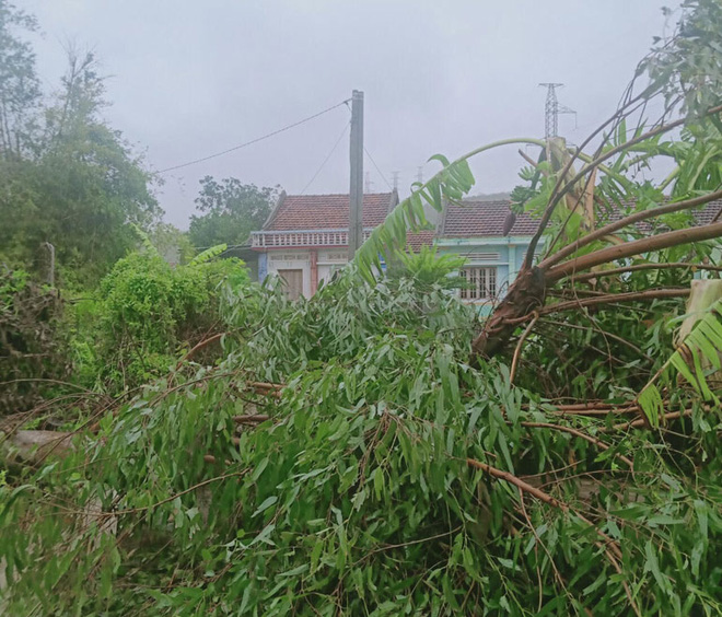 Bão số 12 đổ bộ: Phú Yên mưa rất to, 1 người bị thương, sập 3 ngôi nhà - Ảnh 1.
