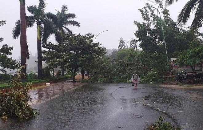 Bão số 12 đổ bộ: Phú Yên mưa rất to, 1 người bị thương, sập 3 ngôi nhà - Ảnh 2.
