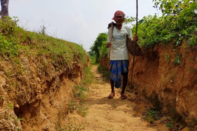 Bị vợ bảo là điên khi miệt mài đào đất, 30 năm sau người đàn ông sững sờ trước những gì nhận được - Ảnh 1.