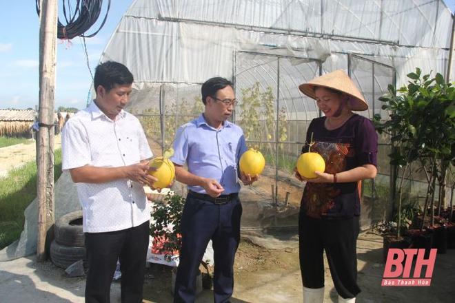 Từ trời Tây về quê, vợ chồng Việt kiều bỏ tiền tỷ làm... nông dân chính hiệu - Ảnh 10.