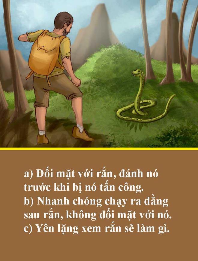 Test 5 giây: Nếu bất ngờ gặp rắn độc, bạn sẽ xử lý như thế nào trong tình huống ngàn cân treo sợi tóc này? - Ảnh 4.