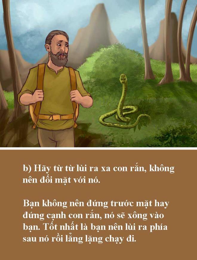 Test 5 giây: Nếu bất ngờ gặp rắn độc, bạn sẽ xử lý như thế nào trong tình huống ngàn cân treo sợi tóc này? - Ảnh 9.