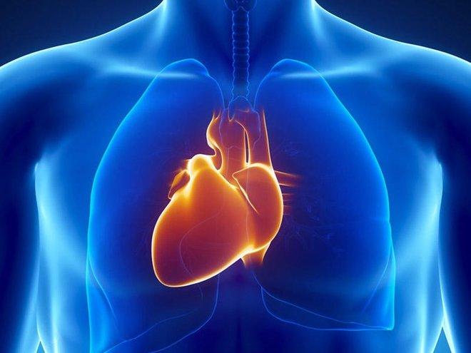 Những tín hiệu cảnh báo nội tạng của bạn quá bẩn: Hãy đối chiếu và nhanh chóng làm sạch - Ảnh 2.