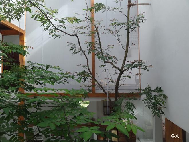 Huế: Căn nhà mới hoàn thiện 1/2, tận dụng gỗ thừa, vật liệu cũ bất ngờ được lên báo Mỹ - Ảnh 8.
