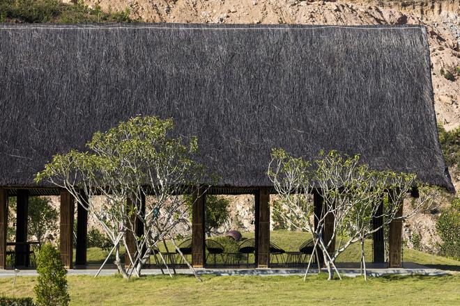 Công viên nghĩa trang sinh thái bằng tre nứa ở Huế xuất hiện ấn tượng trên báo Mỹ - Ảnh 3.