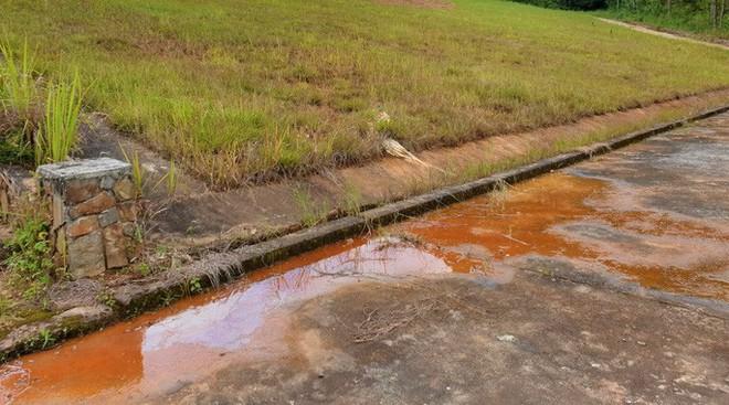 Cận cảnh sụt lún bất thường đe dọa hồ Tuyền Lâm  - Ảnh 2.