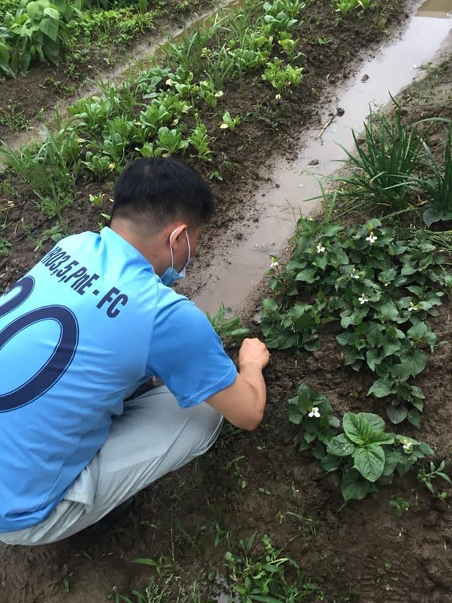 Hàng xóm cho mượn đất, cặp đôi trồng cả một gia tài lớn ở Nhật Bản: Tên từng loại khiến người ta phải ghen tỵ - Ảnh 2.