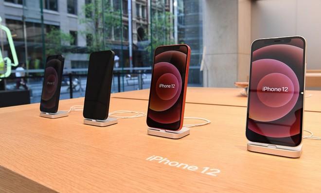 """Các nhà cung ứng của Apple đẩy mạnh tăng ca để đáp ứng """"nhu cầu khủng"""" của dòng iPhone 12 - Ảnh 2."""