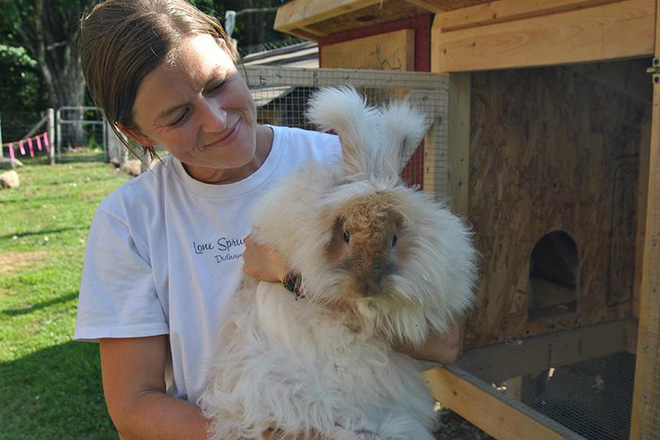 Những loài động vật sở hữu bộ lông kỳ lạ nhất thế giới - Ảnh 16.